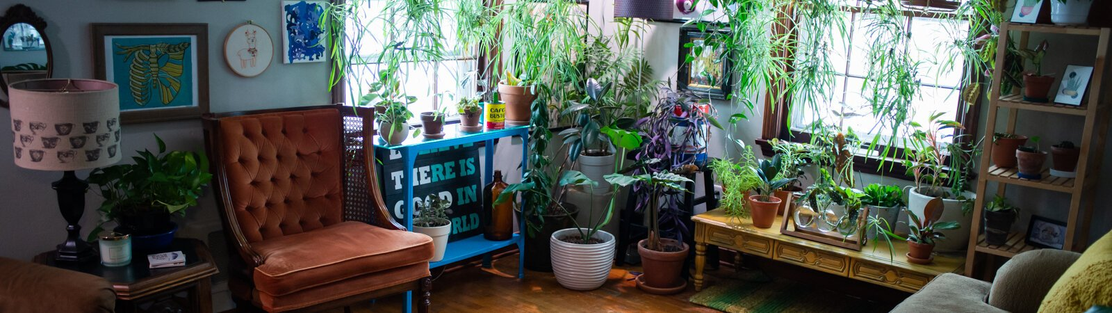 Local art, thrifty finds, and plants decorate this week's home tour: The Crow's Nest on Rudisill.