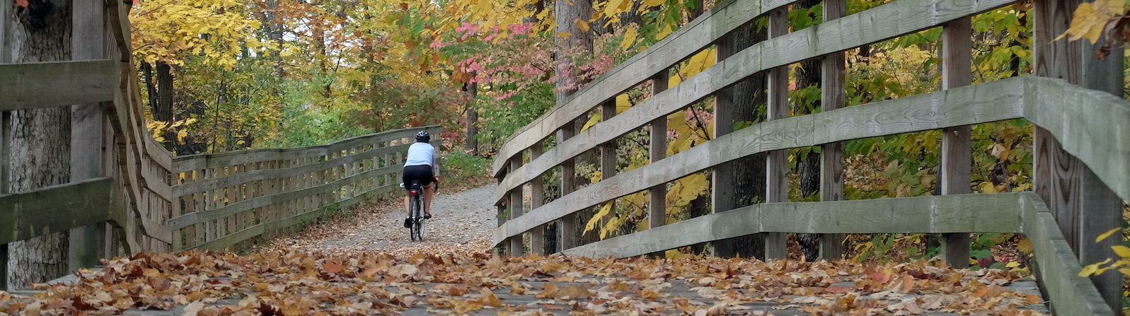 A cyclist travels the Fort Wayne trails. <span class='image-credits'>By Ray Steup</span>