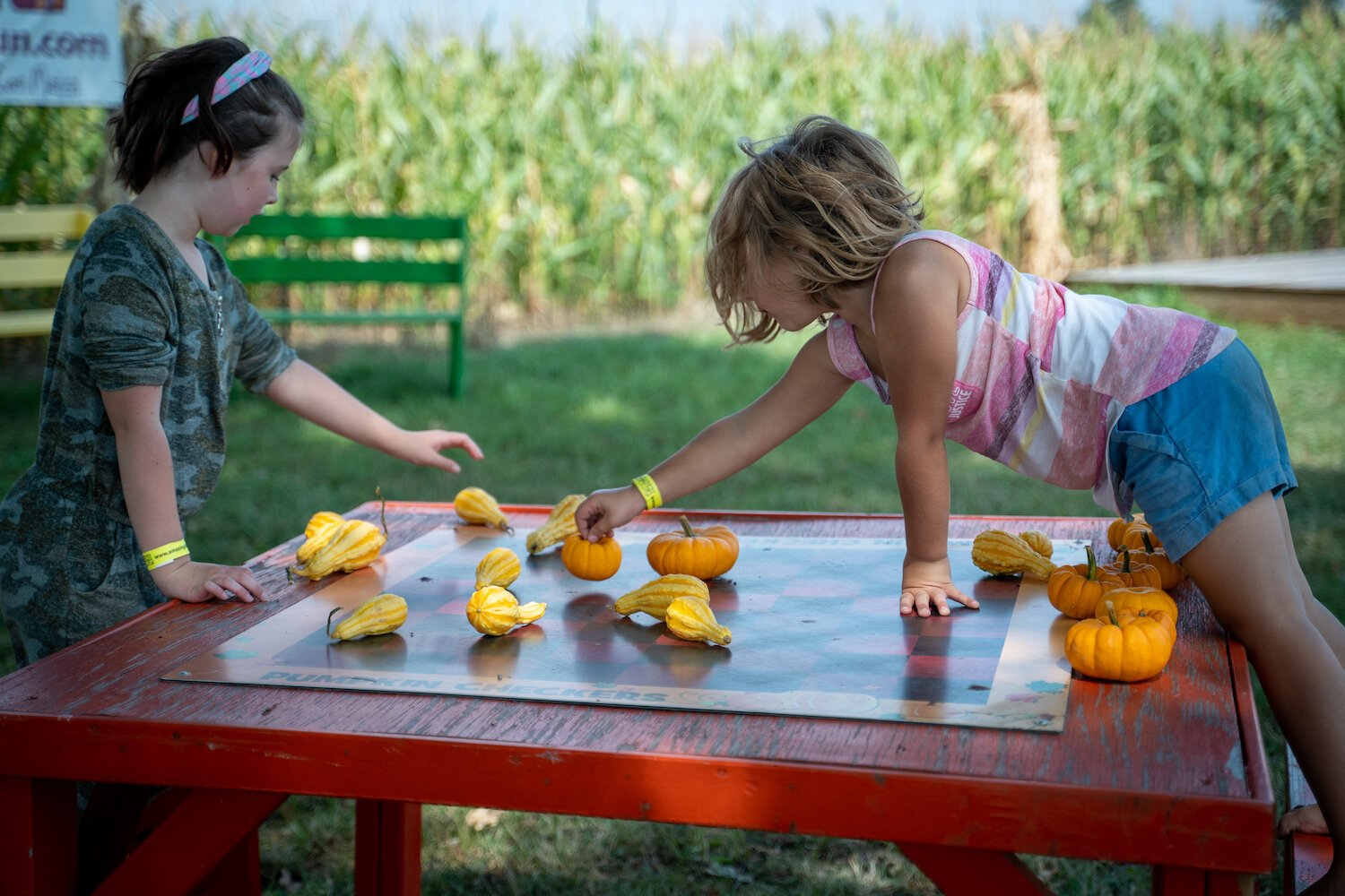 Children enjoy pumpkin checkers at Amazing Fall Fun in Waterloo.