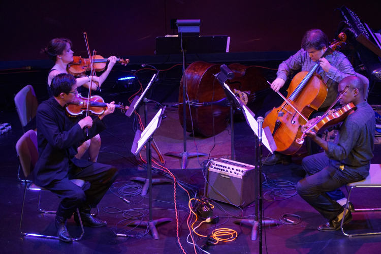 The String Shift quartet performing on Feb. 9 includes Tim and Colleen Tan on violin, Derek Reeves on viola, and Ed Stevens on cello.
